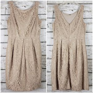Eliza J Fit and Flare Lace Dress